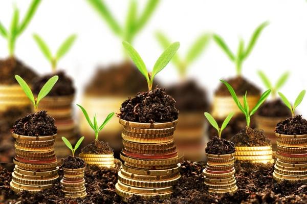 Инвестиции в ПАММ-счета