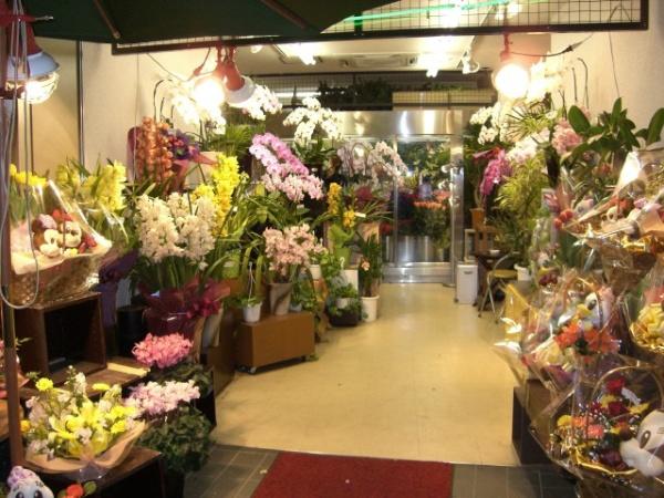 Сколько будет стоить открытие цветочного магазина