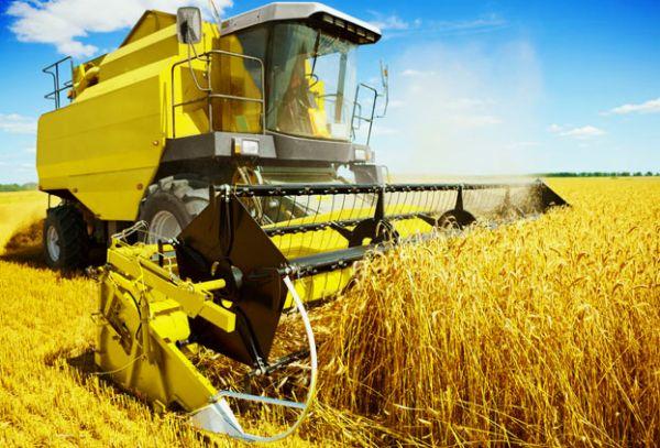 Оформление кредита на развитие сельского хозяйства