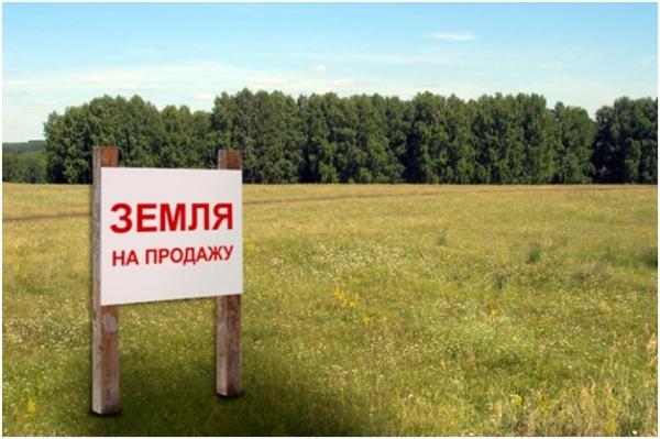 Покупка и продажа земельного пая