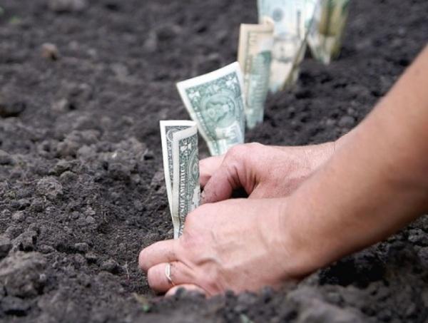 вложение денег в землю