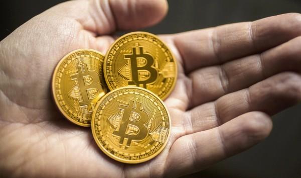 Какую криптовалюту выгоднее майнить и покупать?