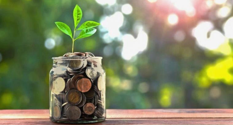 Инвестиции в Сбербанке для физических лиц
